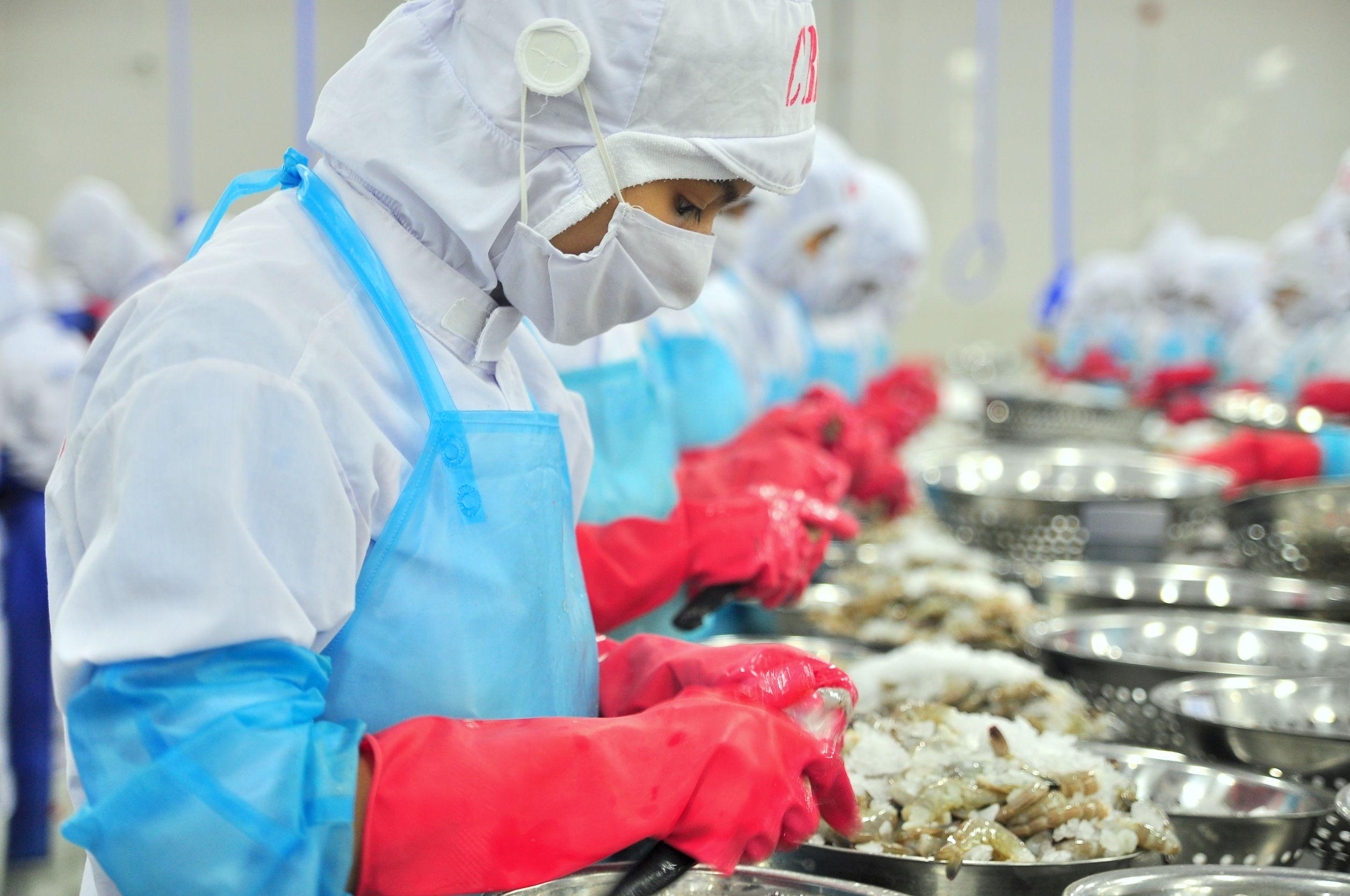 EPIs para indústria de alimentos em Moçambique